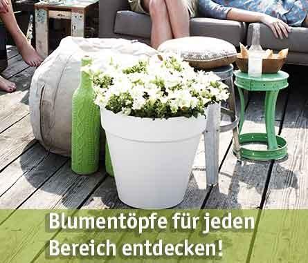Blumentopf günstig kaufen bei baumarkt-deutschland!